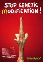 """""""Flip them the Bird!"""" nennt er seinen Entwurf, der McDonald´s zum Verzicht auf Gentechnik bewegen soll. Bild: Greenpeace e.V."""