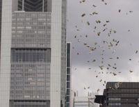 """Geldschauer in der Bankenmetropole Frankfurt. Ein Geldsack öffnet sich über der Hauptwache.Samstag (23.08.2014).  Bild: """"obs/PEACE/Daniela Tiben"""""""