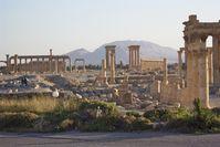 Landschaft in und um Palmyra (2005)
