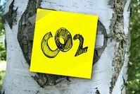 Kohlendioxid: Wird effizienter genutzt.