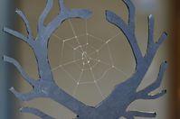 Spinnennetz aus biotechnologisch hergestellten Spinnenseidenproteinen.Quelle: Foto: Gregor Lang, Universität Bayreuth (idw)