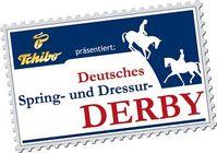 Deutsches Derby 2010