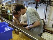 Im Geolabor des Forschungsschiffs METEOR: Dr. Mulitza (rechts) bei der Untersuchung eines Sedimentkerns. Foto: MARUM, Uni Bremen