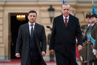 Volodymyr Zelensky und Recep Tayyip Erdoğan (2020)