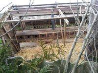 Bei der Nerzfarm in Borken wurde mit dem Abbau begonnen. Bild: (c) VIER PFOTEN, Karolin Frerix
