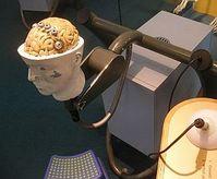 Gehirn: Formen des elektrischen Dopings untersucht. Bild: Flickr/Sandberg