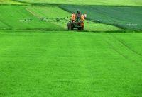 Austragen von Pestiziden: Hormone werden beeinflusst. Bild: pixelio.de, Sturm