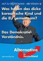 AfD Wahlkampfplakat (EU-Demokratiefeindlich)