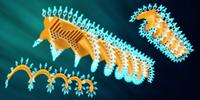 Mikroträger: für Medikamententransport der Zukunft. Bild: ethz.ch/ Peters
