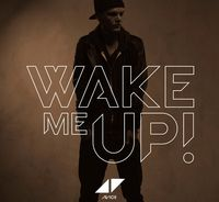 "Cover ""Wake Me Up"" von DJ/producer Avicii"