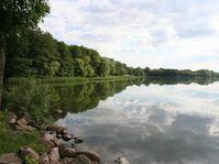 Im Frühjahr und Sommer kommte es im Arendsee oft zu übremäßigem Algenwachstum. Quelle: Foto: IGB (idw)