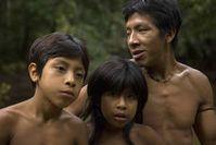 Bild: Den Awá droht die Vernichtung als Volk, da immer neue Wellen illegaler Holzfäller, Siedler und Viehzüchter über ihr Land rollen. © Toby Nicholas/Survival