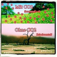 Mehr CO2 bedeutet mehr Leben auf dem Planeten, kein CO2 ist tötlich für alle (Symbolbild)