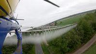 Beim Biozid-Einsatz gegen Eichenprozessionsspinner werden auch viele andere Insekten getötet.  Bild: ZDF Fotograf: ZDF/Michael Nieberg