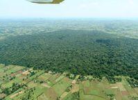 Kakamega-Regenwald in Kenia: Aus dem einstmals zusammenhängenden Waldgebiet sind vom Menschen überprägte Waldinseln geworden, zwischen denen Agrarland liegt. Quelle: Copyright: N. Farwig, BIOTA-E02 (idw)
