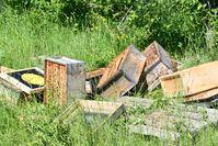 Unbekannte Täter zerstörten einen Bienenstock und entwendeten vier Honigwabenkisten. Bild: Polizei
