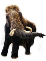 Modell eines Wollhaarmammuts