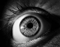 Auge: bei hohem Augeninnendruck droht Erblinden.