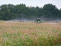 Bei der Gewässerüberwachung sollten dann Proben entnommen werden, wenn Insektizide ausgebracht werden oder Starkregen diese in Gewässer einschwemmt. Quelle: Foto: Carsten Brühl, Universität Koblenz-Landau (idw)