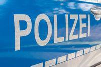Polizeiauto (Symbolbild)