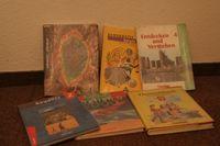 Diverse Schulbücher (Symbolbild)