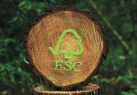 Das FSC Zeichen für verantwortungsvolle Forstwirtschaft, nachhaltige und naturnahe Waldwirtschaft, zertifizierte Forstwirtschaft, Bürgerbeteiligung im Wald, Baumstamm mit dem FSC-Logo, Bild: FSC Deutschland).