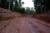 Großangelegte Waldzerstörung: Kein Bild aus Südamerika sondern aus Deutschland (Starnberg). Für Windkraft darf auch naturgeschützer Wald gerodet werden...