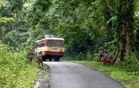 Survival fordert Touristen zum Boykott der indischen Andamanan-Inseln auf, bis die 'Menschensafaris' zu den Jarawa aufhören. Bild: Ariberto De Blasoni/Survival