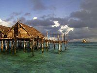 Bild: Jikkie Jonkman / WWF-Canon