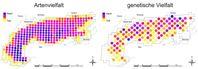 Vergleich der Artenvielfalt mit der genetischen Vielfalt von Pflanzenarten im Alpenraum. Quelle:  (idw)