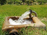 Bewässerung eines Reisfeldes (Symbolbild)