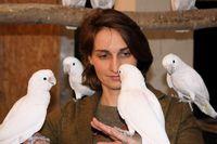 Die Leiterin des Goffini Labors Dr. Alice Auersperg mit ihren Goffini-Kakadus. Quelle: Foto: Julia Auersperg (idw)