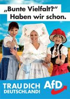 AfD Wahlplakat mit Bunter Vielfalt (Symbolbild)