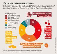 """BUND und Heinrich-Böll-Stiftung: Insektenatlas 2020, S. 13. Bild: """"obs/BUND"""""""