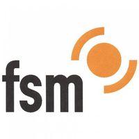 Logo Freiwillige Selbstkontrolle Multimedia-Diensteanbieter e.V. (FSM)