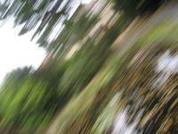 Bild: plumbe / pixelio.de
