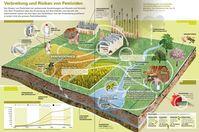 Verbreitung und Risiken von Pestiziden: 75% der zugelassenen Pestizide sind für Mensch und Tier hochgiftig