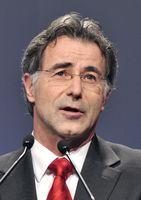 Wolfgang Merkel, 2010.