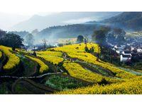 Bild: Jiangxi Wuyuan Tourism Co., Ltd.