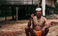 Seit sie in Kontakt gerieten, kämpfen die Matsés gegen schwere Krankheiten wie Malaria und eingeschleppte Erkrankungen, mit deren Heilung sie keine Erfahrung haben. Bild: © Survival International