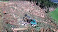 Forstwirtschaft: Hier wird ein großes Waldstück mit Hilfe von Vollernter industriell und kosteneffizient, zu Lasten der Natur, gerodet (Symbolbild)