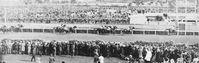 Phar Lap kurz vorm Sieg des Melbourne Cup im Jahr 1930. Bild: dts Nachrichtenagentur