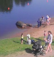 Bergung der toten Mädi aus einem See in Estland. Bild: Delfi lugeja foto