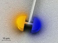 Kernstück des neuen Mikrolasers ist der elektrische Resonator, bestehend aus zwei halbkreisförmigen Kondensatoren, die durch eine Spule verbunden sind (hier eine Rasterelektronen-Mikroskop-Aufnahme). Die Farbintensität repräsentiert die Stärke des elektrischen Feldes; die Farbe selbst, die jeweilige Polarität. ETH Zürich