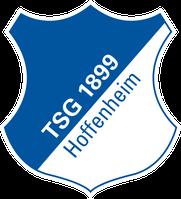 1899 Hoffenheim Logo