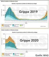 """Die Grippe ist in 2020 an Corona """"gestorben"""" oder....übergegangen"""