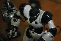 Roboter: zur menschlichen Unterstützung. Bild: flickr.com/k_millo
