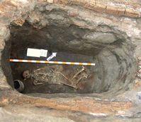 Blick in einen Grabhügel nahe der Stadt Kirovograd in der Ukraine mit einem 5.000 Jahre alten Skelet Quelle: (Foto: Alla V. Nikolova) (idw)