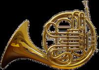Horn (Musikinstrument)