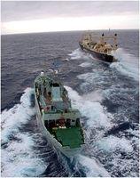 Foto: Sea Shepherd